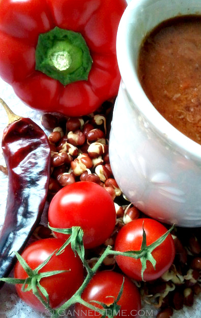 Spicy Tomato Adzuki Bean Soup - Vegan / GF with sprouted Adzuki Beans from Canned-Time.com